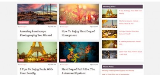 Mansar-free blogging Wordpress theme
