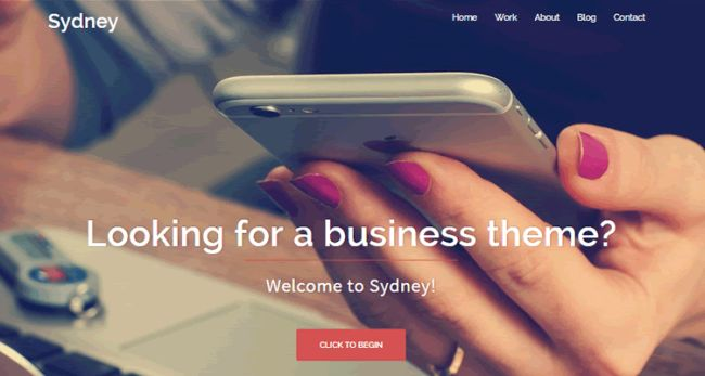 Sydney-free WordPress business theme